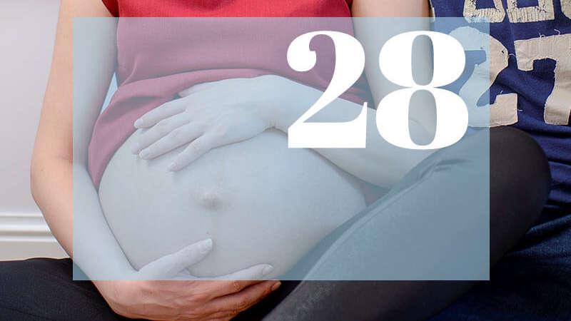 28 tydzień ciąży