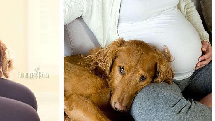 17 słodkich psiaków, które czekają na nowego członka rodziny