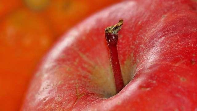Jabłka w ciąży i podczas karmienia piersią