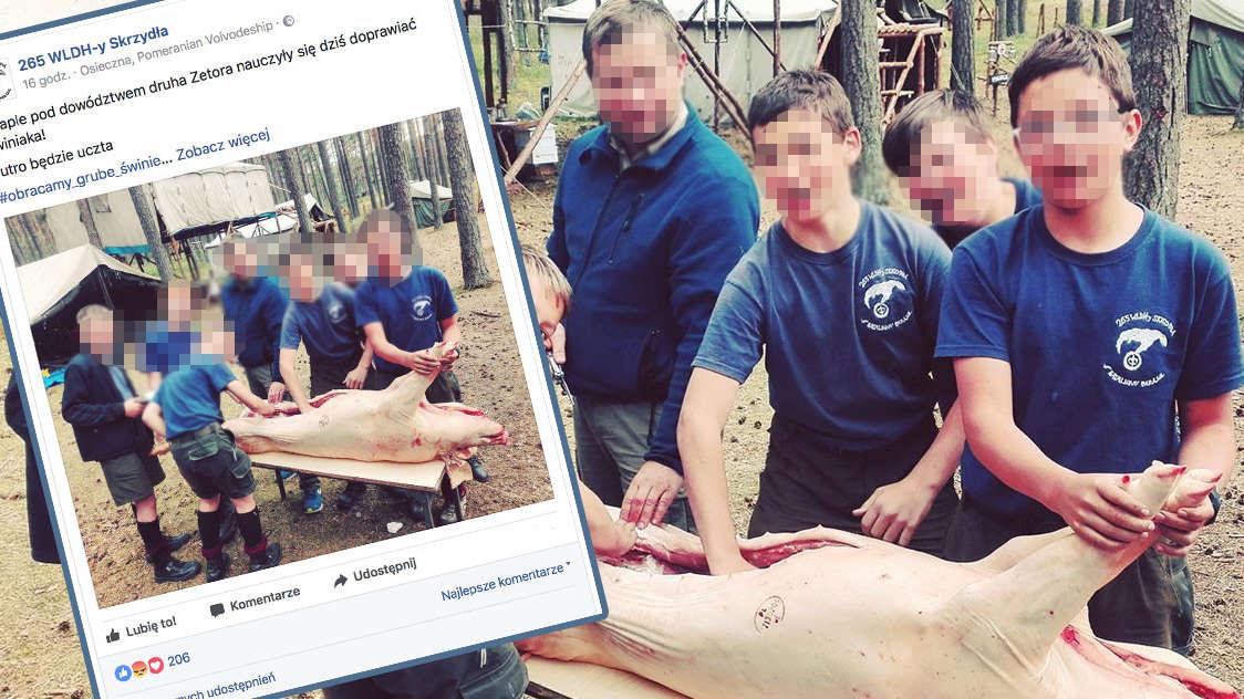 Zdjęcie harcerzy doprawiających zwierzę podzieliło internet