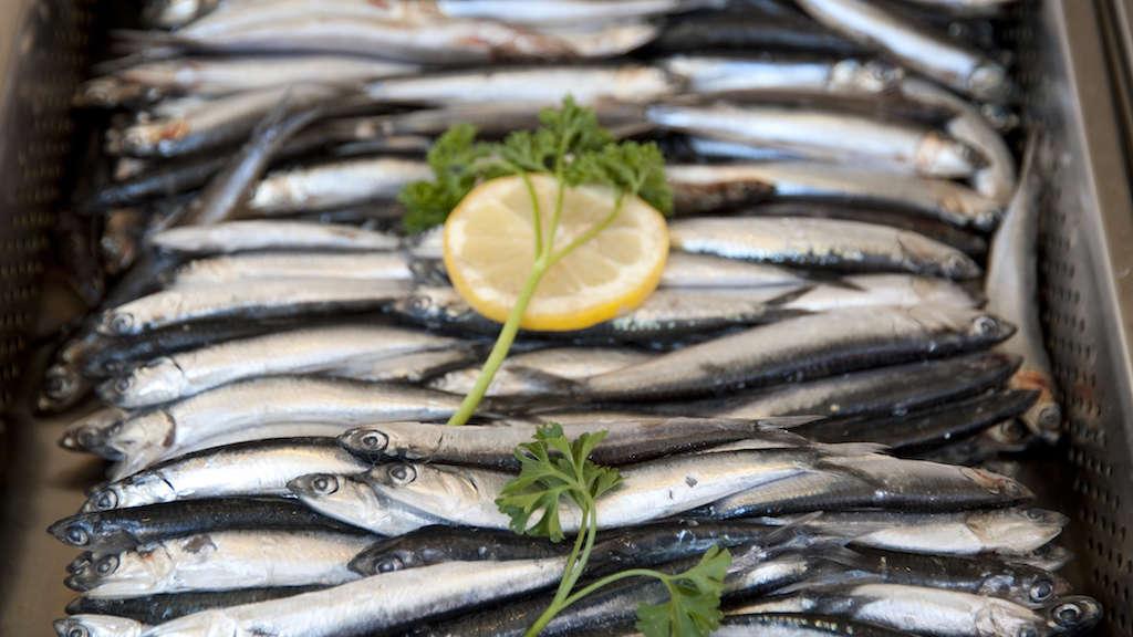 Ryby w ciąży i podczas karmienia piersią
