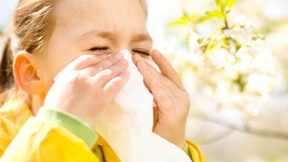 Co teraz pyli – okresy pylenia różnych roślin i sposoby radzenia sobie z alergią