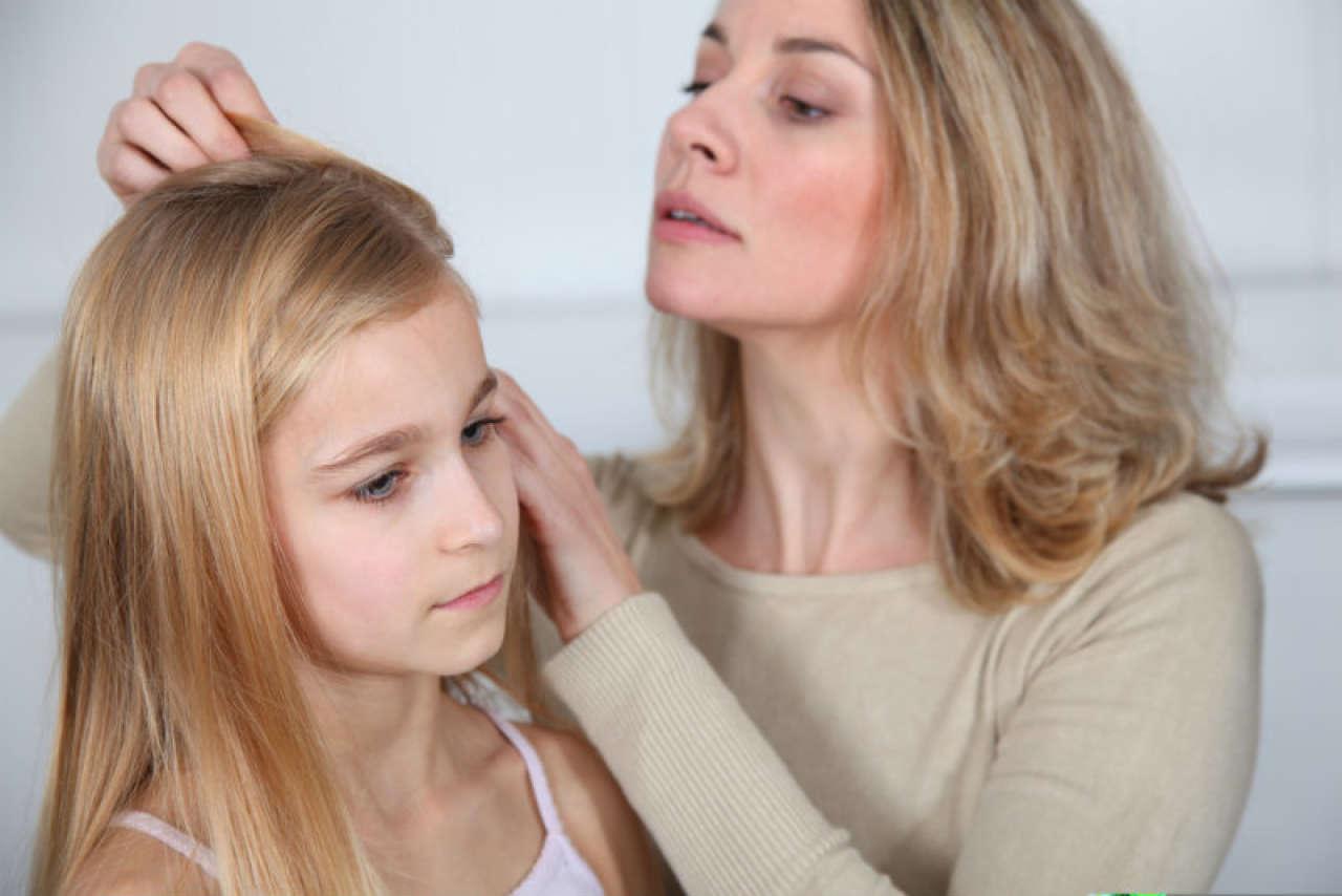 Jak wygląda wsza? Jak rozpoznać, leczyć i zapobiegać wszawicy u dzieci?