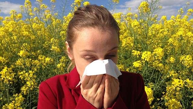 Alergia krzyżowa [TABELA]