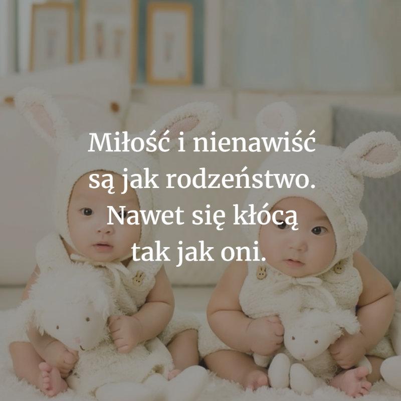 cytaty rodzeństwo