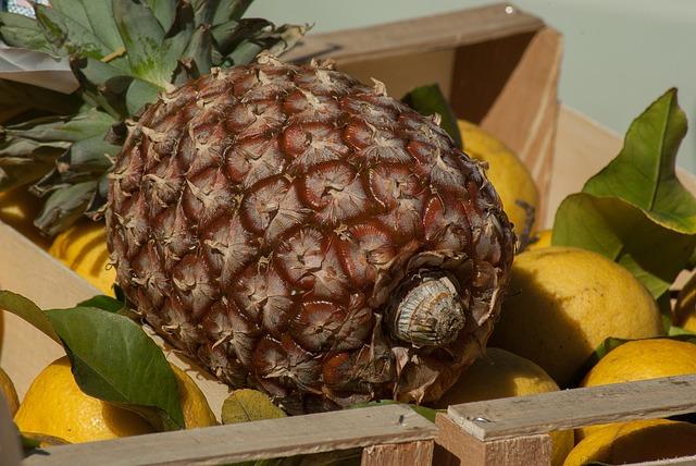 ananas w ciąży