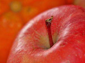 jabłka w ciąży