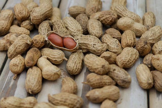 czy jeść orzeszki ziemne w ciąży i podczas karmienia piersią?