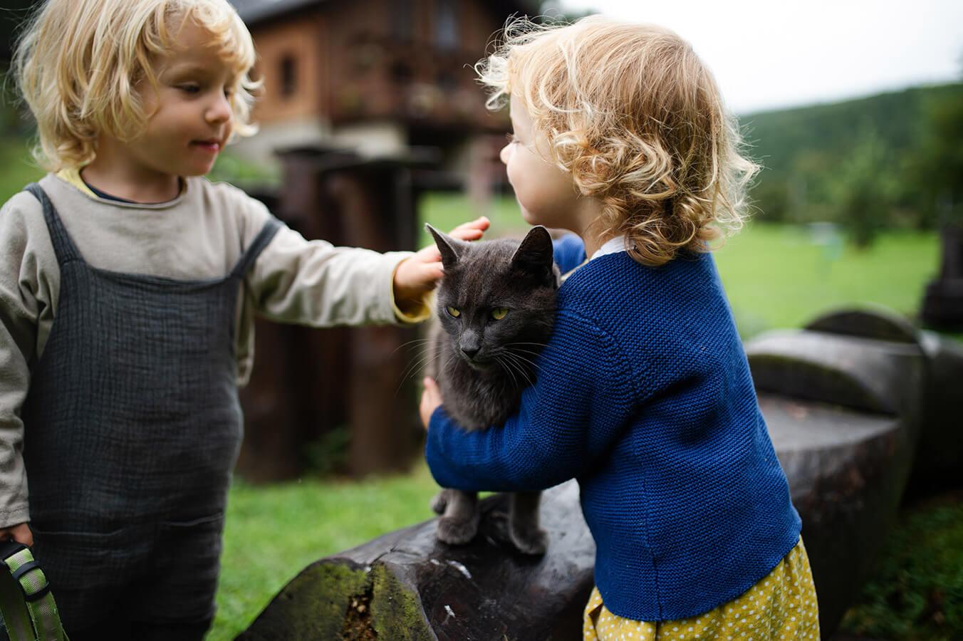 Kot dla dziecka: czy możliwe jest pogodzenie dziecka i czworonożnego przyjaciela?