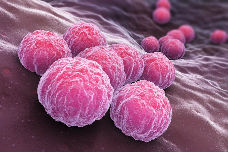 Chlamydia: bakteria, która może prowadzić do bezpłodności