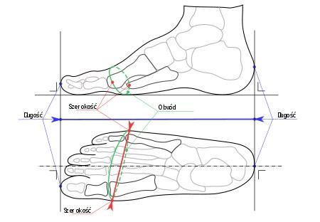 Jak zmierzyć długość stopy dziecka?