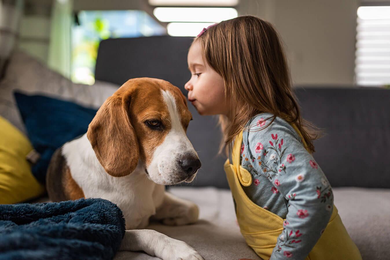 Najpopularniejsze imiona dla psa – ponad 101 propozycji
