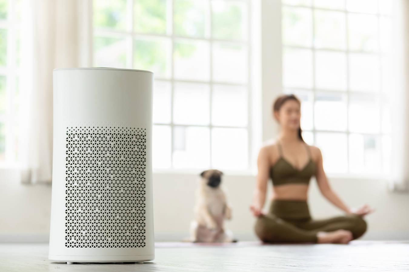 Dlaczego w każdym domu powinien być oczyszczacz powietrza?