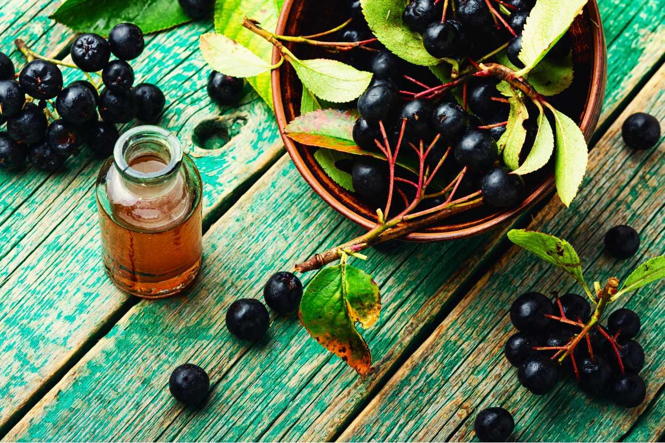 Jak zrobić sok z aronii żeby nie był cierpki? Poznaj sprawdzony sposób